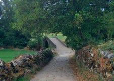 Gammal stenbro och bana på Caminoen de Santiago i Spanien Royaltyfri Bild