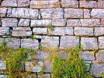 gammal stenvägg royaltyfri fotografi