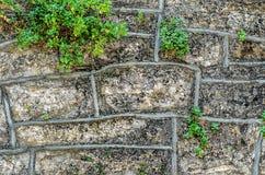 Gammal stenvägg Fotografering för Bildbyråer