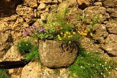 Gammal stenvägg med blomkrukan Fotografering för Bildbyråer