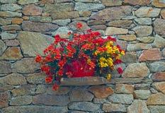 Gammal stenvägg med blommor Arkivbild