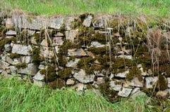 Gammal stenvägg med mossa Arkivfoto