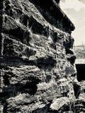 Gammal stenvägg med Spiderwebs nära den Roxburgh fördämningen royaltyfri foto