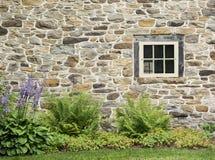 Gammal stenvägg och lantligt fönster med purpurfärgade Hostablommor royaltyfri bild