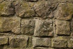Gammal stenvägg som täckas med mossa Arkivbilder