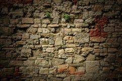 Gammal stenväggbakgrund arkivbilder