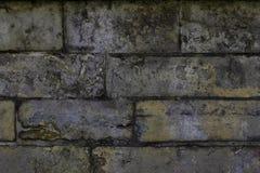 Gammal stenv?gg Tappningeffekt royaltyfria bilder