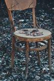 gammal stol royaltyfria foton