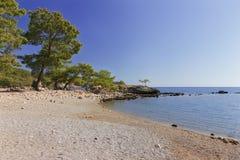 Gammal strand på Phaselis, Turkiet Arkivbilder