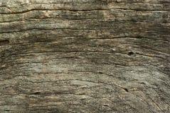 Gammal stubbe Arkivbild