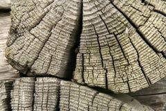 gammal stubbevägg Arkivfoto
