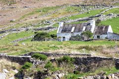 Gammal stuga i lantliga Irland Royaltyfri Bild