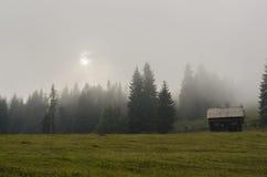 Gammal stuga på en dimmig sommareftermiddag Royaltyfria Foton