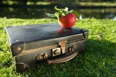 Gammal svart resväska vid floden med det röda äpplet Royaltyfri Bild