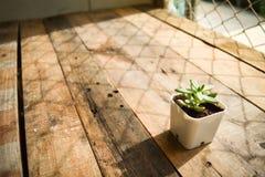 Gammal tappning Stly för träbruntbakgrund Royaltyfria Bilder
