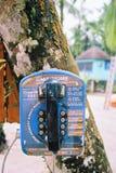 Gammal tappningtelefon som hänger på ett träd i Panama royaltyfri fotografi