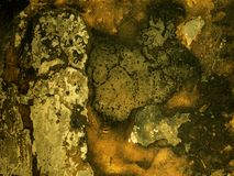 Gammal tegelsten för lera för texturbakgrundsstuckatur arkivfoto