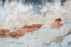 Gammal tegelstentextur som täckas med buse och, smutsar ner konkret backgro Fotografering för Bildbyråer