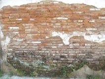 Gammal tegelstenvägg, gammalt murverk på pldbyggnader Royaltyfria Foton