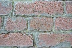 Gammal tegelstenvägg i frost Pushkin Arkivfoton