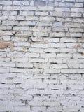 Gammal tegelstenvägg med det vita slutet för målarfärgbakgrundstextur upp royaltyfria foton