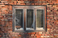 Gammal tegelstenvägg med fönstret Arkivbild