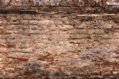 Gammal tegelstenvägg med lösa tegelstenar och att försämras Royaltyfria Bilder