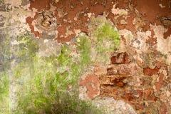 Gammal tegelstenvägg med sjaskig målarfärg Arkivbilder