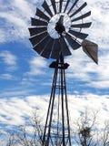 Gammal Texas väderkvarn som står fortfarande högväxt royaltyfria foton