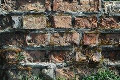 Gammal textur för bakgrund för tegelstenvägg Royaltyfri Fotografi