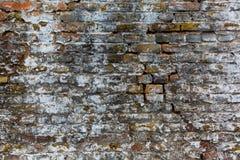 Gammal textur för tegelstenvägg, brunt- och vit Arkivfoto