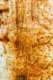 Gammal texturerad lantlig metallvägg Royaltyfri Fotografi