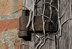 Gammal texturerad trä och bult på ett gammalt skjul Fotografering för Bildbyråer