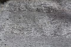gammal texturtree Arkivfoto