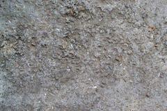 gammal texturvägg för cement fotografering för bildbyråer