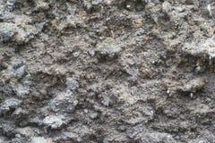 gammal texturvägg för cement Arkivbilder