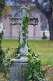 gammal tombstone Arkivbilder
