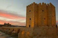 Gammal town av Cordoba på skymningen, Spanien royaltyfri bild