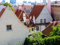 Gammal Town, Tallinn, Estland Fotografering för Bildbyråer