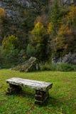 Gammal träbänk i den gröna ängen Royaltyfri Fotografi