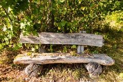 Gammal träbänk i skog Royaltyfri Fotografi