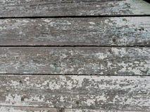 Gammal träbakgrund från restna av målarfärg Arkivfoto