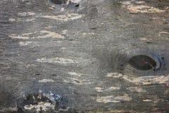Gammal träbakgrund, slut upp Royaltyfri Bild