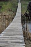 Gammal träbro över floden och vasser, grön natur Arkivfoto