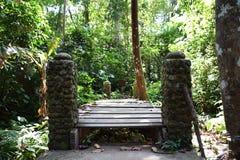 Gammal träbro- och stenpelare med skogbakgrund royaltyfri bild