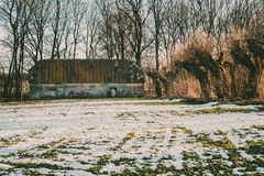 Gammal träbruten och övergiven ladugård i vinter arkivfoton