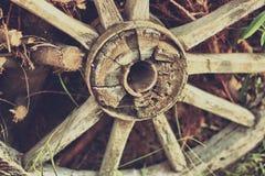 Gammal träcartheel Royaltyfria Bilder