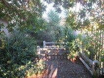 Gammal trädgård fotografering för bildbyråer