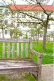 Gammal trädgård för bänk på våren Royaltyfri Foto