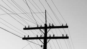 Gammal träelektrisk pol med linjära isolatorer och elektriska trådar royaltyfri fotografi